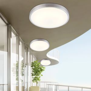Modern Simple Fashion LED Dimmable Acrylic Round Single Border Flush Mount Light Living Room Bedroom Study Room Dining Room