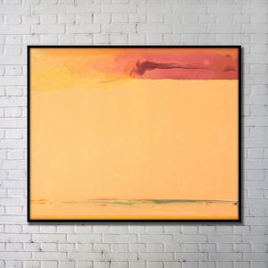 Contemporary Wall Art Orange Abstract Wall Print without Frame 48'*36'