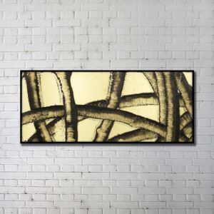 Contemporary Wall Art Natural Things Abstract Wall Print with Black Frame 48'*20' F