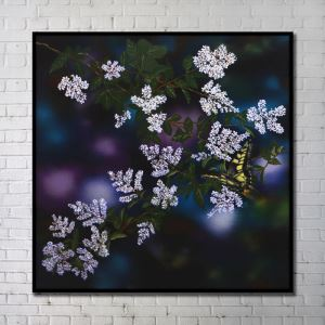 Contemporary Wall Art Flowers Abstract Wall Print with Black Frame 40'*40' I