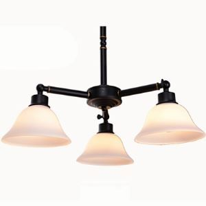 Dark Bronze 3 Light Chandelier in Bell Glass Shade