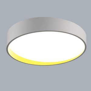 Modern Simple Metal + Plastic + Acrylic Baking Paint LED Ceiling Light Without Remote Control Energy Saving 60cm