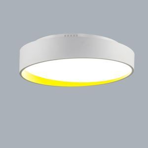 Modern Simple Metal + Plastic + Acrylic Baking Paint LED Ceiling Light Without Remote Control Energy Saving 40cm