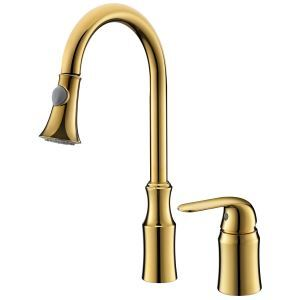 American Simple Double Hole Single Handle  Ti-PVD Kitchen Pulling Faucet