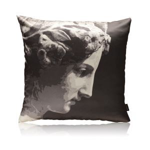 Modern David Plaster Model Pattern Black And White Stain Printing Pillow Cover
