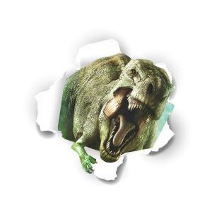 Modern Style Tyrannosaurus Roar PVC 3D Wall Stickers