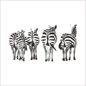 Creative Zebra 5 Zebras PVC Plane Wall Stickers Black White 2 Options