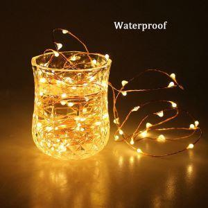 Firefly DIY Copper Wire Lights LED String Lights 40 Lights
