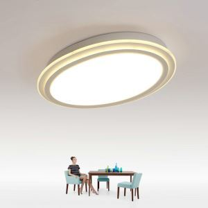 Modern Simple LED Flush Mount Oval Dining Room Bedroom Lighting