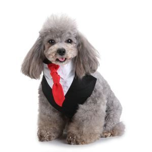 Formal Dog Tuxedo Dog Bandana with Bow Tie and Cravat Designs Black SJJ01