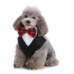 Formal Dog Tuxedo Dog Bandana with Bow Tie and Cravat Designs Black SJJ04