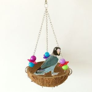 Bird Nest Natural Coconut Shell Bird Hammock Bird Swing