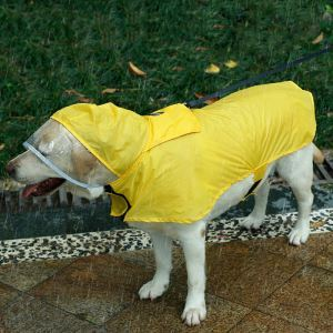 Waterproof Pet Clothes Large Dog Light Raincoat