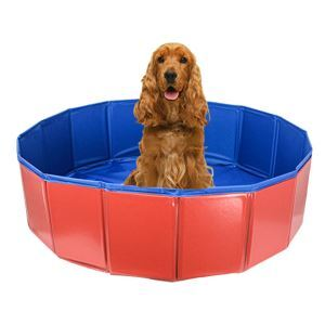 Dog Bathtub Foldable Swimming Pool