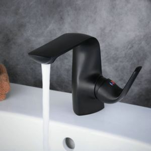 Contemporary Sink Faucet Stoving Varnish Black Sink Faucet Single Handle Faucet BL7522B