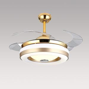 Modern Ceiling Fan Light Mute Fan Light Exquisite Unique Decoration Light with Remote Control