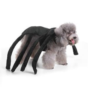 Halloween Pet Clothes Spider Shape Dog Dress