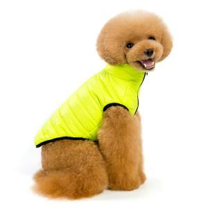 Dog Clothes Dog Autumn Winter Clothing Windproof Warm Dress with Leash