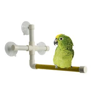 Birds Bath Supplies Parrot Bath Station