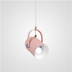 Contemporary Simple Spotlight Angle Adjustable Aluminum Spotlight Sotving Varnish Light