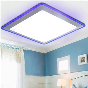 Ceiling Led Light Flush Mount Contemporary Living Room/Bedroom/Kitchen/Bathroom/Study Room Lighting Idea