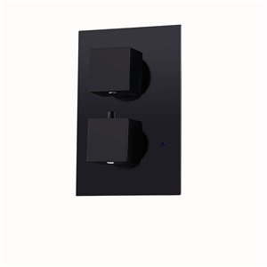 Modern Square Shower Valve Concealed 2-Way Thermostatic Shower Valve in Black