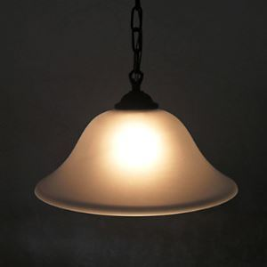 simple Desinged Pendant Light with 1 Light