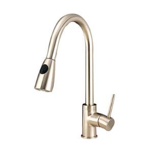 Solid Brass Pull Down Kitchen Faucet - Nickel Brushed Finish