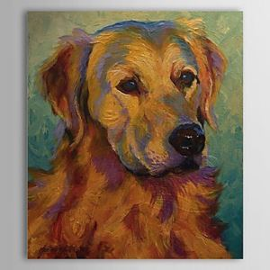 Hand Painted Oil Painting Animal Dog 1304-AN0089