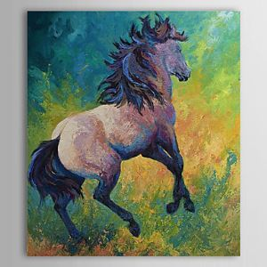 Hand Painted Oil Painting Animal Horse 1304-AN0071