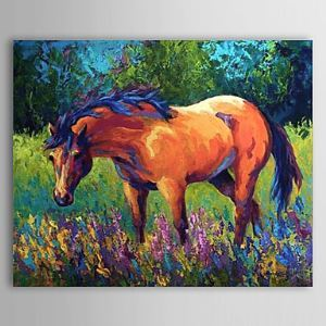 Hand Painted Oil Painting Animal Horse 1304-AN0072
