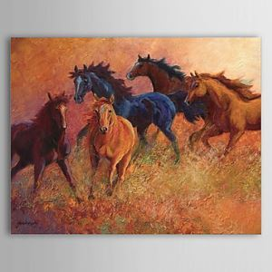 Hand Painted Oil Painting Animal Horse 1304-AN0079
