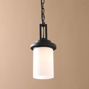 40W E26/E27 Country Light Black Pendant Light Iron & Glass ceiling lights (Chain Adjustable) Black Chandelier