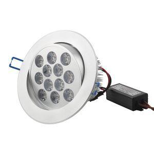 12W led Ceiling Light 1000LM WW AC85-265V