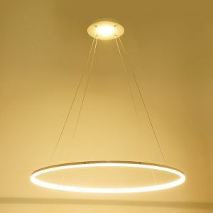 (In Stock) Ceiling Lights Modern LED Acrylic Pendant Light  Living LED Ring Lights 60CM