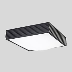 Black Flush Mount Lights LED 16W 220V White-Light Simple Modern
