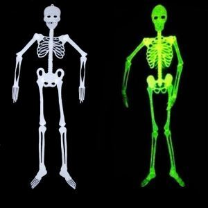 Halloween Fluorescence Skeleton for Bars Masquerade Halloween Holiday Decor Halloween Gifts