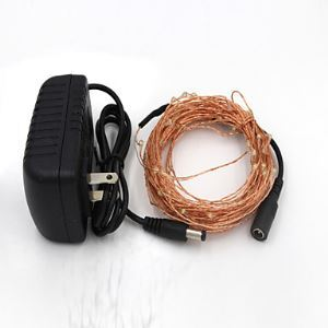 10M 100-LED Warm White/Cool white Light Copper Wire Lamp and AC Adapter(220-12V) Energy Saving