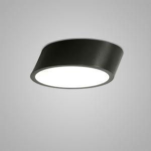 Nordic Modern Creative Simple LED Flush Mount Oval Design Bedroom Living Room Dining Room Lighting Black and White 2 Options