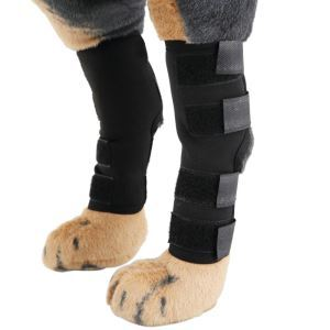 Extra Supportive Dog Knee Protector Canine Rear Leg Hock Joint Wrap Protects Wounds