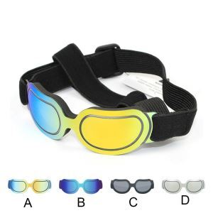 Colorful Pet Goggles