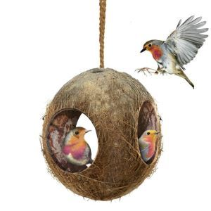 Birds Splitter Parrot Hamster Coconut Shell Nest