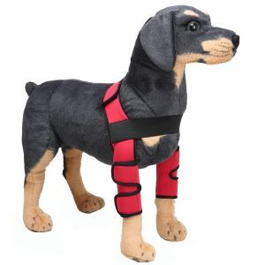 Pet Knee Protector Dog Surgical Injury Fixed Knee Pads