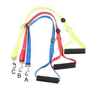 Large Dog Glowing Leash Battery LED Adjustable Dog Leash