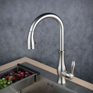 Pull-Down Sprayer Kitchen Faucet Brushed Single Handle Faucet BL1731N