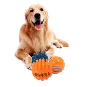 Dog Leaking Food Ball Molar Rubber Leaking Food Toy Bite-proof Feeder Snack Ball