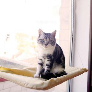 Cat Hammock Cat Hanging House Kitten Windowsill Mat with Sucker