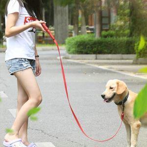 Pet Leash USB Charging Dog Leash Middle Dog Small Dog Flat Leash