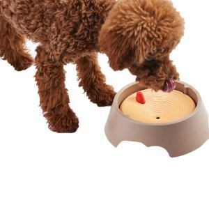 Pet Water Bowl Cats Dogs Floating Splashproof Waterer