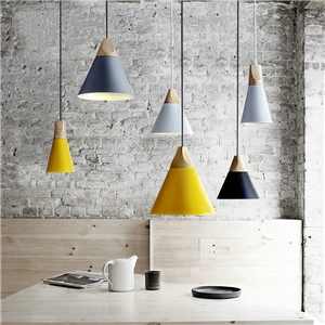 American Country Pendant Light Iron Stoving Varnishing Craftsmanship Pendant Light 1 Light White Silver Orange